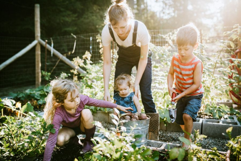 GettyImages 1174001541Family Harvesting Vegetables From Garden at Small Home Farm RyanJLane