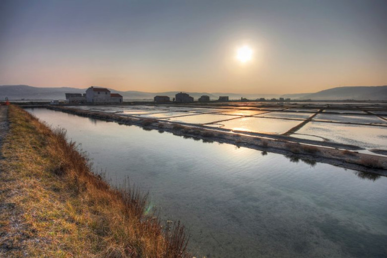The Sečovlje Salt Pans