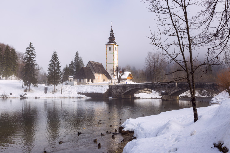 10869897 winter on the lake bohinj