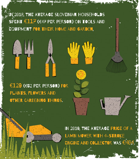 Infographics: sowing